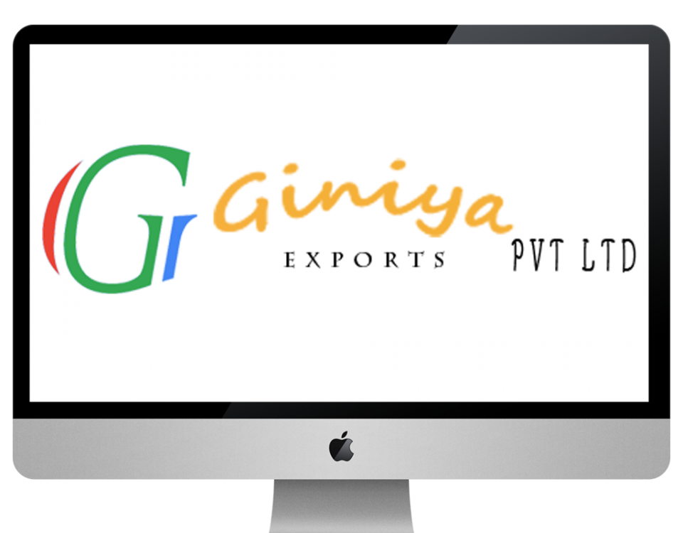 giniya exports XpertLab