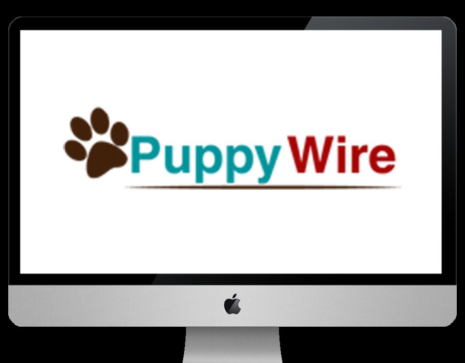 puppywirw xpertlab