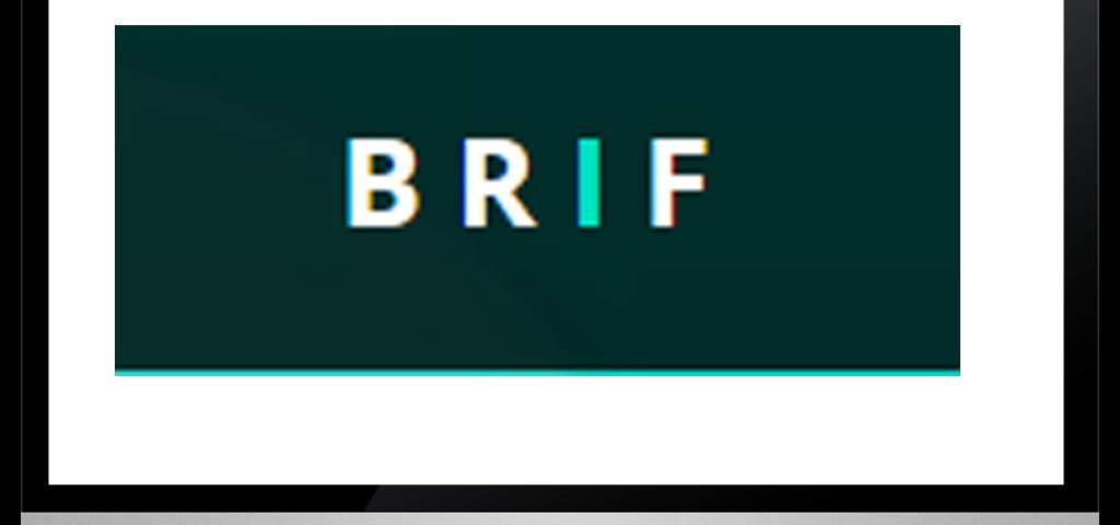 brief_xpertlab