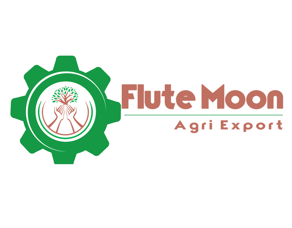 xpertlab-flute moon